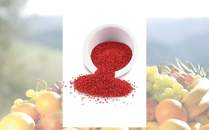 Neu: Cranberry Seeds von Ocean Spray