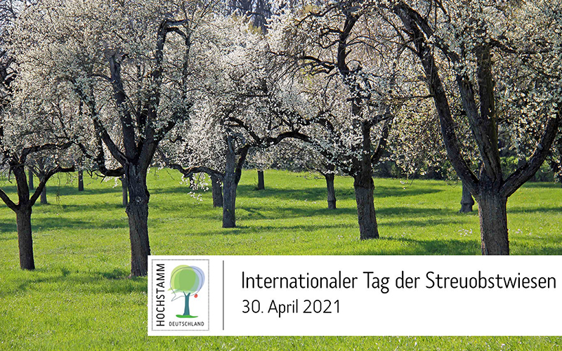 "Erster Internationaler ""Tag der Streuobstwiesen"" am 30. April 2021"
